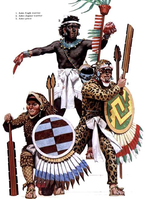 aztecas vs incas essays Essays related to aztec inca comparison 1 aztecs and native americans  the aztecs and incas were dominant in managing their governments, however the roman .