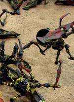 tableros de wargame creados por los aficionados al juego de Starship Troopers